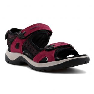 ECCO Ladies Shoes Offroad Sangria Fig Sandals